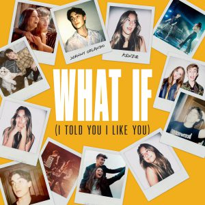WHAT IF (I TOLD YOU I LIKE YOU)