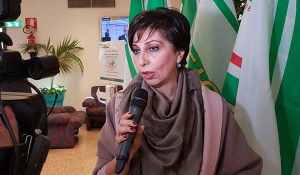 Mimma Calabrò: «Abbiamo incontrato Musumeci. Presentato emendamento per stabilizzare i Pip»