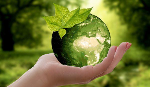 Giornata della Terra: gli eventi in programma a Palermo